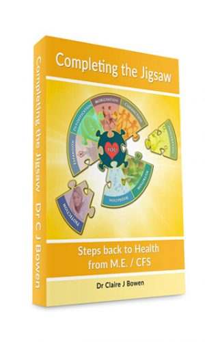 Completing-the-Jigsaw